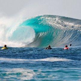 Vocabulario del surfer